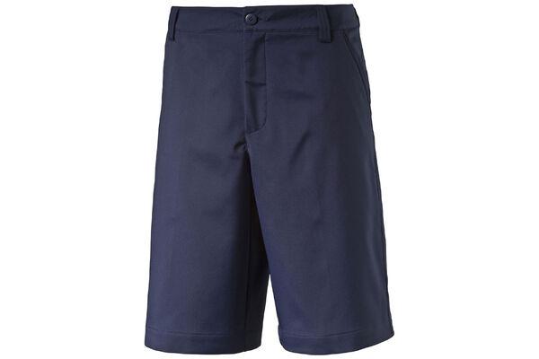 Puma Shorts Tech S6