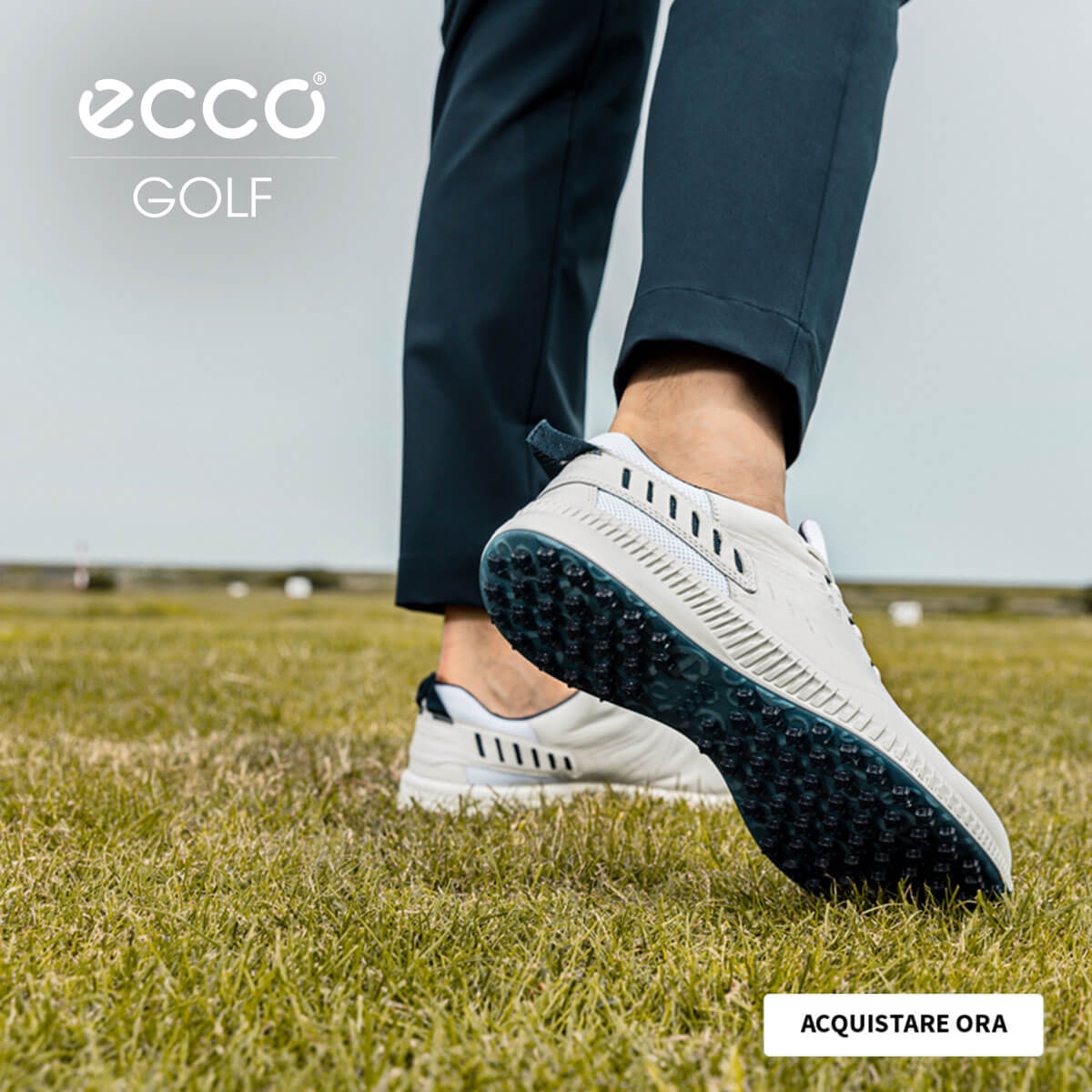 ECCO SHOES